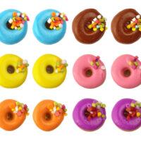 Doughnut Earring Studs